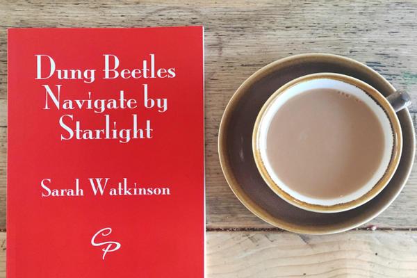 sarah watkinson poems blog