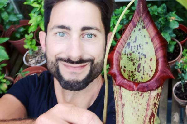 chris thorogood and nepenthes