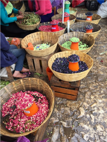Varieties of beans at a local market in Chiapas, Mexico (credit: Marcela Mendoza)